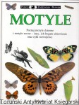 Motyle / Paul Whalley